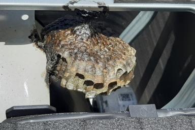 湖西市の室外機の蜂の巣駆除